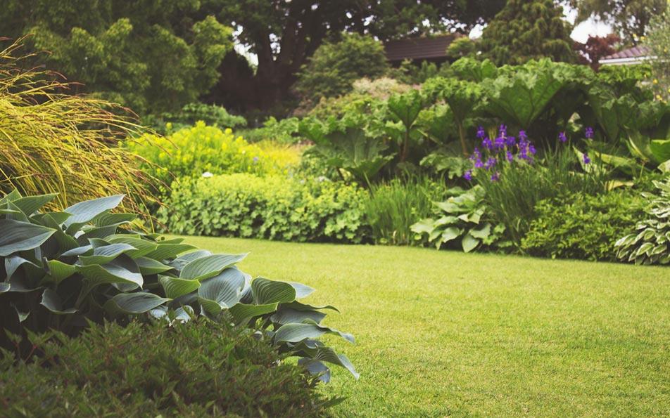 Entretien de jardins et d espaces verts autour de caen et for Entretien des jardins et espaces verts